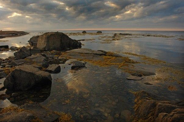 Белое море.. Фото Виктора Дрягуева