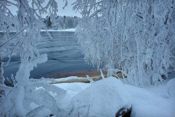 Фото В. Дрягуева