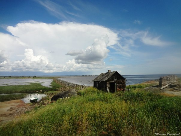 Поморский берег. Фото Татьяны Каньшиевой